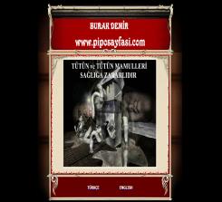 piposayfasi.com (2004-2017)