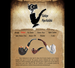 turkiyepipokulubu.com (2004-2017)