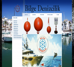 bilgedenizcilik.com (2011-2020)