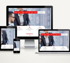 DANIŞMANLIK WEB SİTESİ - O161
