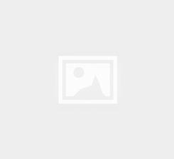 RENT A CAR WEB SİTESİ - O209